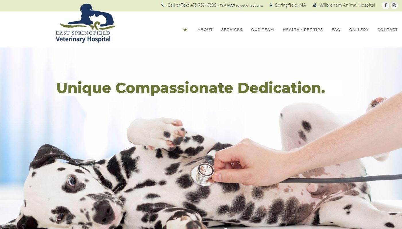 ESV Vet Hospital WordPress Website Design Western MA